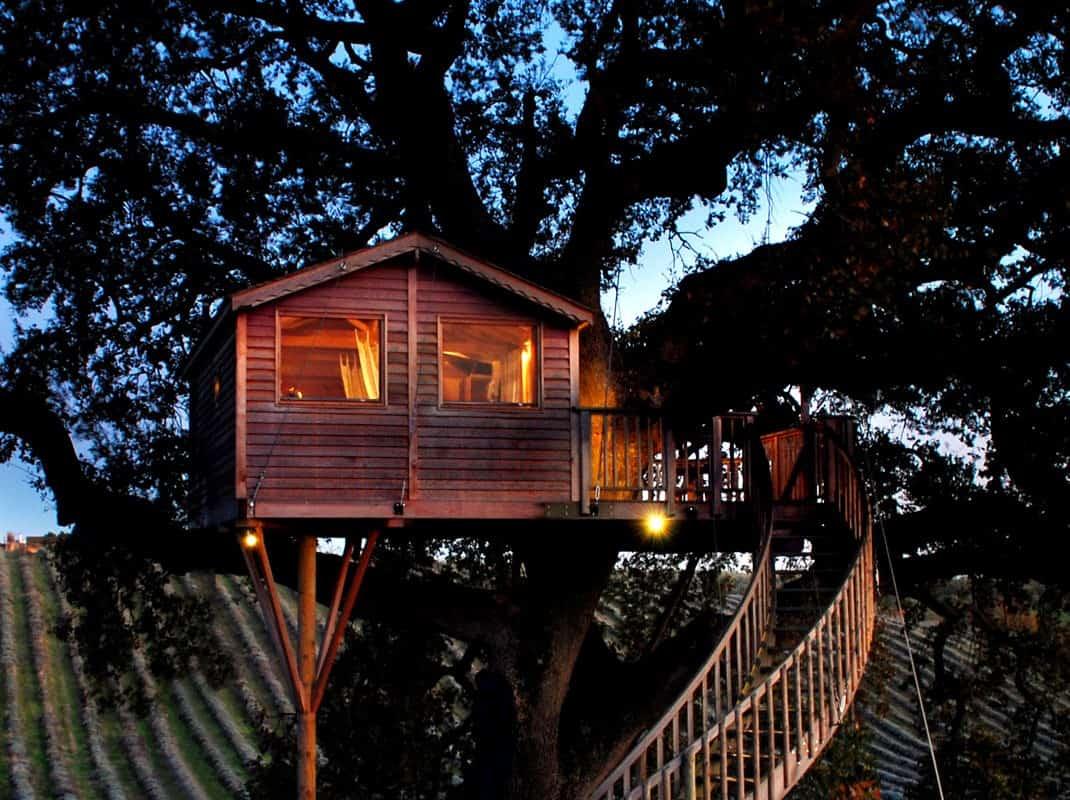 Dormire in un appartamento su albero, esperienza unica