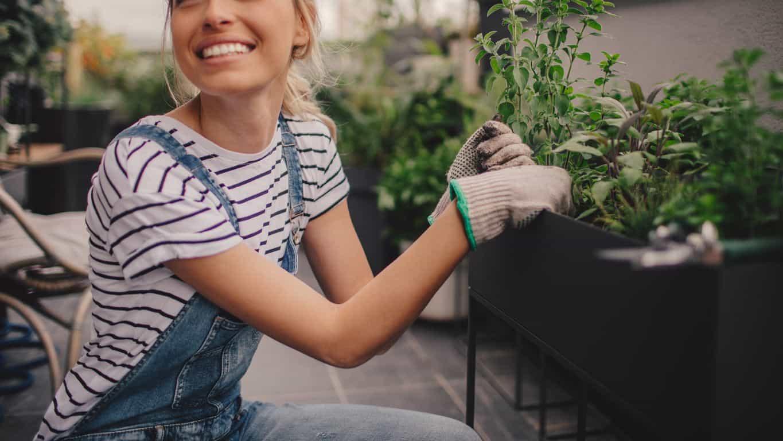 Se gli spazi per il giardino sono limitati si parte dalle piante in vaso.